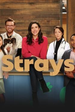 Strays-hd